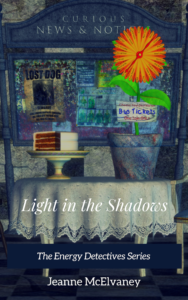 Light in the Shadows Cover