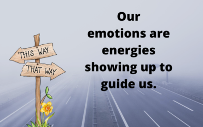Emotions Guide Us